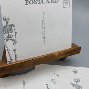 Set of 6 Skeleton Postcards
